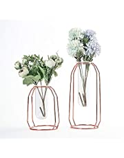 DEDC Juego de 2 Jarrones de Cristal con Soporte de Metal, para Plantas Hidropónicas, Hogar, Jardín, Boda, Decoración (Dorado Rosa)