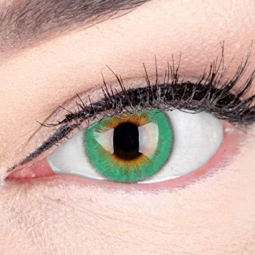 Sehr stark deckende und natürliche Grüne Kontaktlinsen SILIKON COMFORT NEUHEIT farbig 'Daisy Green' + Behälter von GLAMLENS - 1 Paar (2 Stück) - DIA 14 mm - ohne Stärke 0.00