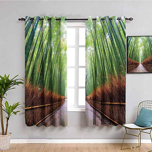 House Decor Collection Blackout Curtain Liner Path to Bamboo Forest Arashiyama Kyoto Japan Japanese Famous Landscape Image Easy to Clean W84 x L84 Inch Green Peru