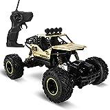 Coche teledirigido 1:16 4WD RC Coche teledirigido Coche eléctrico todoterreno 2,4 GHz RC RC RC Coche todoterreno Buggy Coche juguete juguete regalo para niños adultos (dorado)