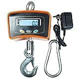 Denshine Peso escala 500 kg/1100 Crane báscula Digital báscula para colgar Industrial de alta...