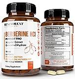 Premium Berberine HCL 730mg - 120 VCAPS...