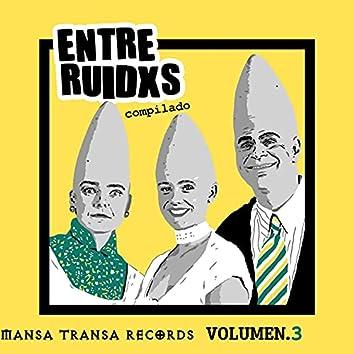 Entre Ruidxs Volumen 3