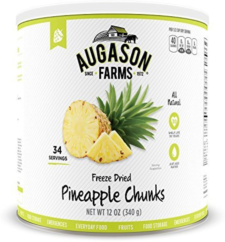 Augason Farms Freeze Dried Pineapple Chunks  10 Can, 12 oz by Augason Farms
