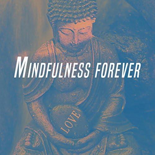Relaxing Mindfulness Meditation Relaxation Maestro, Deep Sleep Meditation & Zen