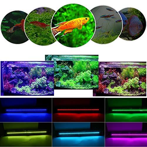 HIRAWE Luces para acuarios