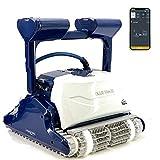 DOLPHIN Blue Maxi 65 Robot limpiafondos Piscina - Robot automático limpiafondos...
