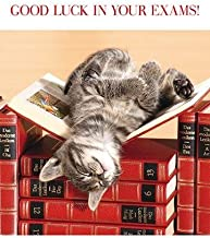 Greeting Card (PH0935) Good Luck In Your Exams - Cat Napping on Books