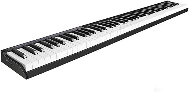 ZXL Piano Digital Portátil Hand Roll Piano 88 Teclado Edición ...