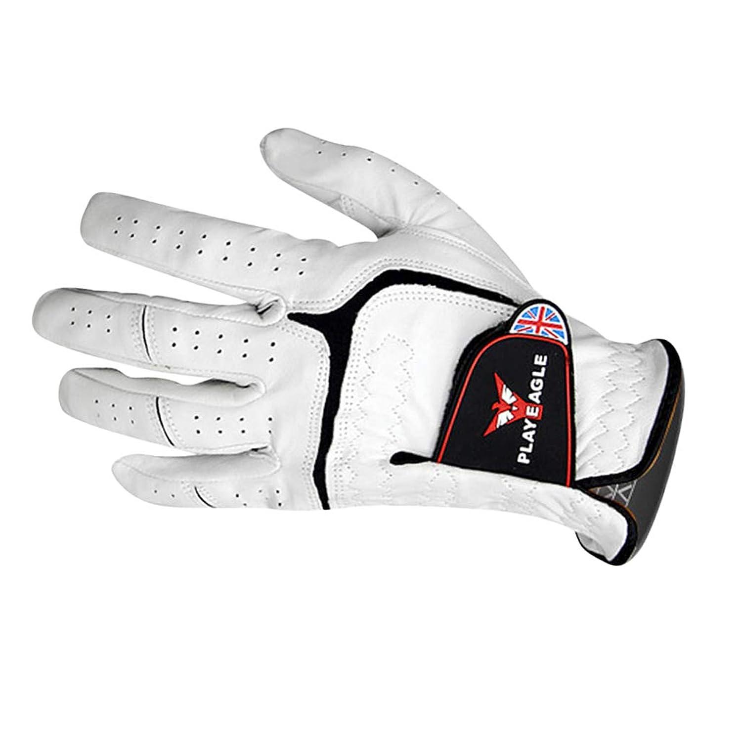 家主完了アカデミックPerfeclan ゴルフグローブ 手袋 左手装着(右利き)用 全4サイズ
