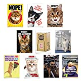 NobleWorks - 10 Funny Birthday Cards Boxed - Assorted Humor Photos, Cartoons, Bulk Bday Greeting Cards with Envelopes - Petigreet Cats A4886BDG