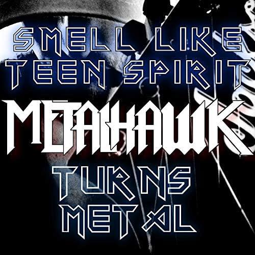 METALHAWK