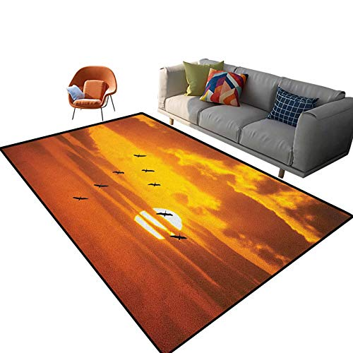 Birds Chair mat for Carpet V Shaped Formation Flying in Cloudy Scenic Sky with Majestic Sunset Cloudscape Print Indoor Outdoor Kids Play Mat Nursery Throw Rugs 3'x 5'