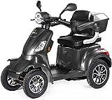 VELECO Scooter Électrique 4 Roues Senior/Pour Handicapés 1000W FASTER (Gris)