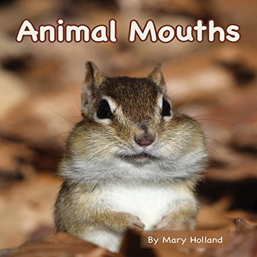 Animal Mouths copertina