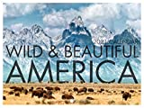 Wild and Beautiful America Travel Great Outdoors Nature National Parks Photography 2021 Wall Calendar 12 Month Monthly Full Color Thick Paper Pages Folded Ready to Hang 18x12 inch