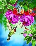 Ojmikmg Pintar por Numeros para Adultos Niños Principiantes -Pintura por Números Flor De Colibrí con Pinceles y Pinturas DIY Conjunto 40 x 50 cm Sin Marco