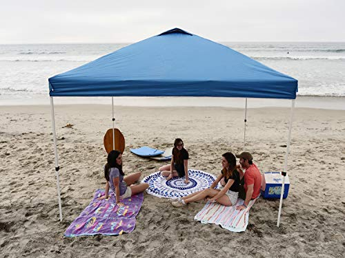 Crown Shades Canopy (10x10) Review 2020