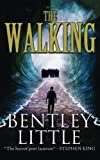 "Cover of Bentley Little's ""The Walking."""