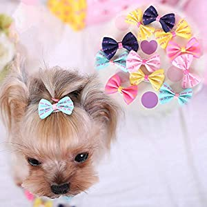 PIHAPPY Pet Cat Puppy Topknot Dog Hair Bows Hairpin Hair Clips with Rubber Bands Grooming Accessories Assorted Colors Pack of 20PCS