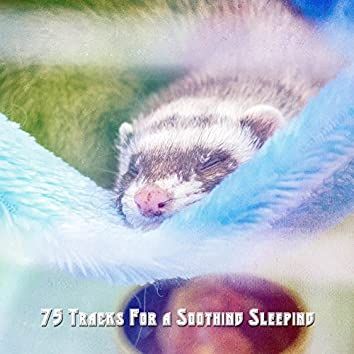 75 Tracks For a Soothing Sleeping
