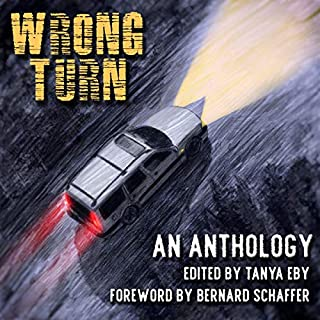 Wrong Turn                   By:                                                                                                                                 Tanya Eby - editor,                                                                                        Bernard Schaffer - foreword                               Narrated by:                                                                                                                                 Vikas Adam,                                                                                        Andi Arndt,                                                                                        Peter Berkrot,                   and others                 Length: 10 hrs and 42 mins     8 ratings     Overall 4.0