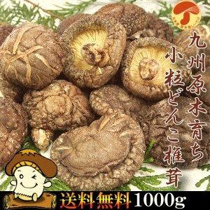 九州産原木小粒干しどんこしいたけ1000g 国産椎茸 無農薬原木栽培 椎茸 どんこ きのこ
