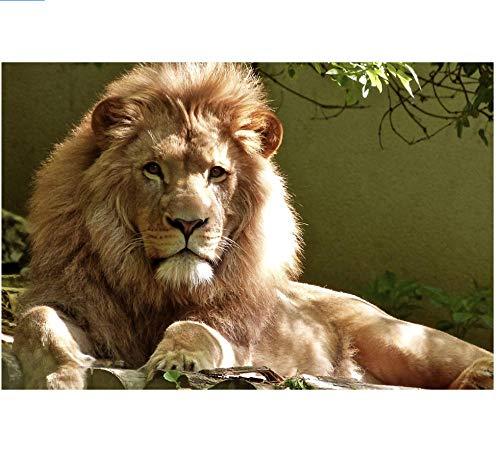 5D Diamond Painting Full Drill Kits DIY Animal Lion Lying Down Embroidery Round Rhinestone Drawing Mosaic Cross Stitch Home Room Decor Gift Craft