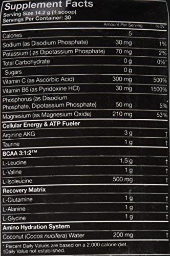 MUSCLE PHARM Amino 1 - 426 g - Fruit Punch - 51MnoNDjSSL