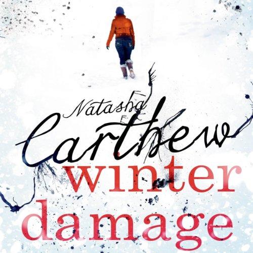 Page de couverture de Winter Damage