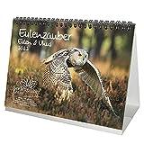 Eulenzauber Eulen und Uhus DIN A5 Tischkalender für 2022 - Geschenkset Inhalt: 1x Kalender, 1x Weihnachtskarte (insgesamt 2 Teile)