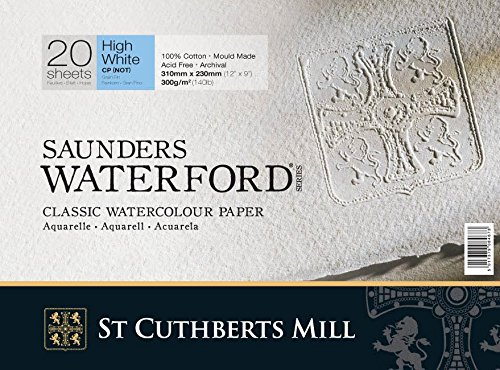 70x50cm 300gsm Watercolour Paper Botanical Ultra Smooth St Cuthberts 5 Sheets