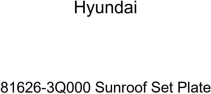 Hyundai 81626-3Q000 Sunroof online shop 2021new shipping free shipping Plate Set