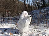 HaoFst White Medium Size Ghillie Suit Camo Woodland Camouflage Forest Hunting 4-Piece + Bag