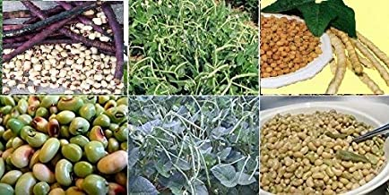 southern cowpeas
