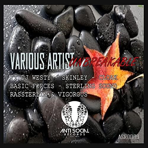 DJ Westy, Skinley, Cloak, Basic Forces, Sterling Sound, RasSterlin & Vigorous