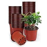 Dsaren 100 Piezas Macetas de Plástico para Plantas 10 cm Macetas Semillas Redonda Macetas de Vivero Hogar Jardín Interior Exteriores (Rojo + Negro)