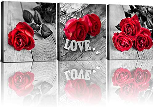 Red Wall Decor for Bathroom Bedroom Black White Rose Flowers Pictures Canvas Art Framed Painting product image