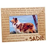 A dog picture frame with a collie in the picture