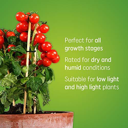 GE Grow Light Bulb, 24-Inch LED Grow Lights for Indoor Plants, Full Spectrum, 40-Watt, Indoor Plant Light with Balanced Lighting for Seeds & Greens