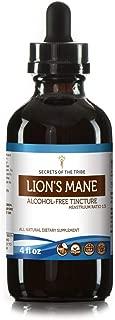 Lion's Mane Tincture Alcohol-Free Extract, Organic Lion's Mane (Hericium erinaceus) Dried Mushroom (4 fl oz)