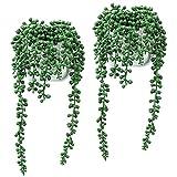 Belle Vous Plantas Artificiales Decorativas Suculenta Planta Rosario (Pack de 2) Maceta Colgante de Pared Blanca Plantas Artificiales Exterior/Interior – Decor Hogar, Jardín, Bodas, Oficina, Fiesta