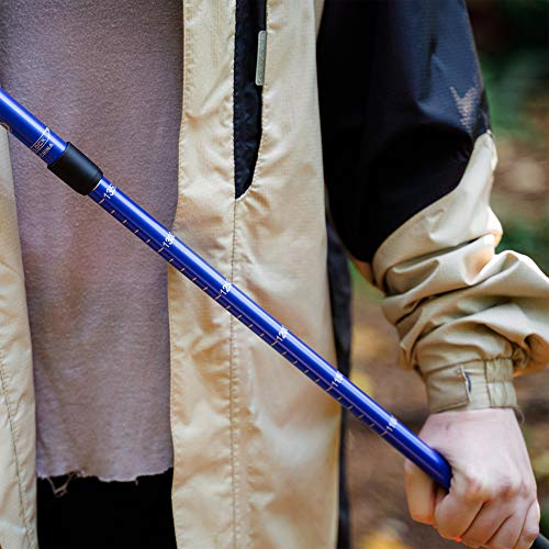 BAFX Products - 2 Pack - Anti Shock Hiking / Walking / Trekking Trail Poles - 1 Pair, Blue, Royal Blue