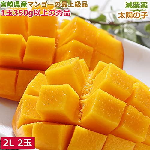 減農薬 宮崎産マンゴー 太陽の子 2L 2玉 約700g 化粧箱入 贈答用
