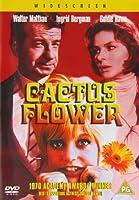 Cactus Flower [DVD]