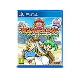 Wonder Boy: Asha in Monster World - PS4