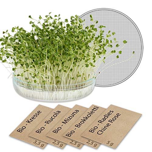 Microgreens-Pflanzset mit Keimglas für Sprossen mit Sieb GreenEdge Bio-Keimsprossen Aufzuchtset Pflanzen Microgreens Kräutersamen Zuchtset (1)