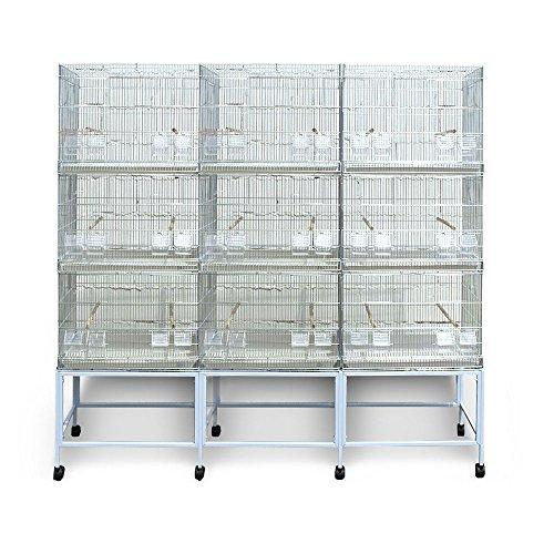 Pet s Solution Batteria Gabbie per Uccelli Allevamento Esposizione da 180 cm