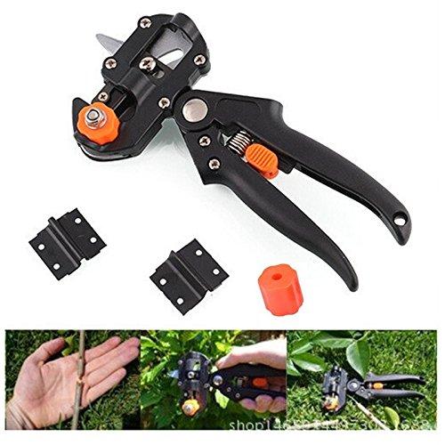 Nouveau Jardin Fruit Tree Pro Sécateur Ciseaux Outil de découpe à greffer Lame + 2 outils de jardin Sécateur Arbre Outil de découpe