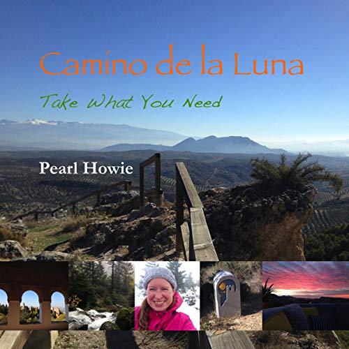 Camino de la Luna - Take What You Need: Part 1 audiobook cover art